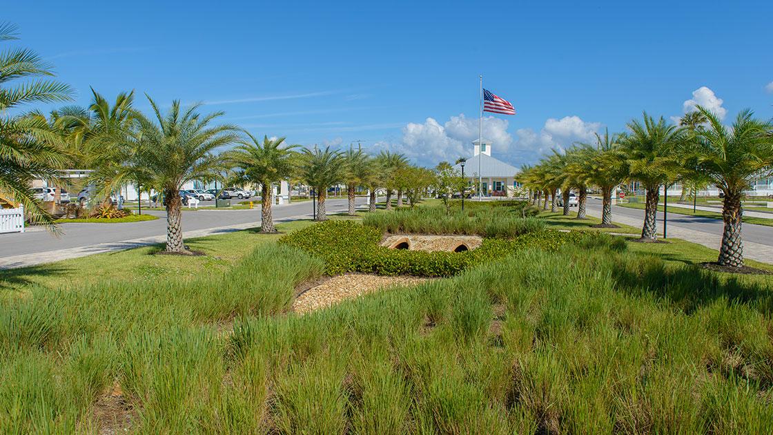 Ocean Breeze Resort Palm Tree Driveway View