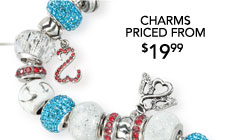 Charms Priced From $19.99